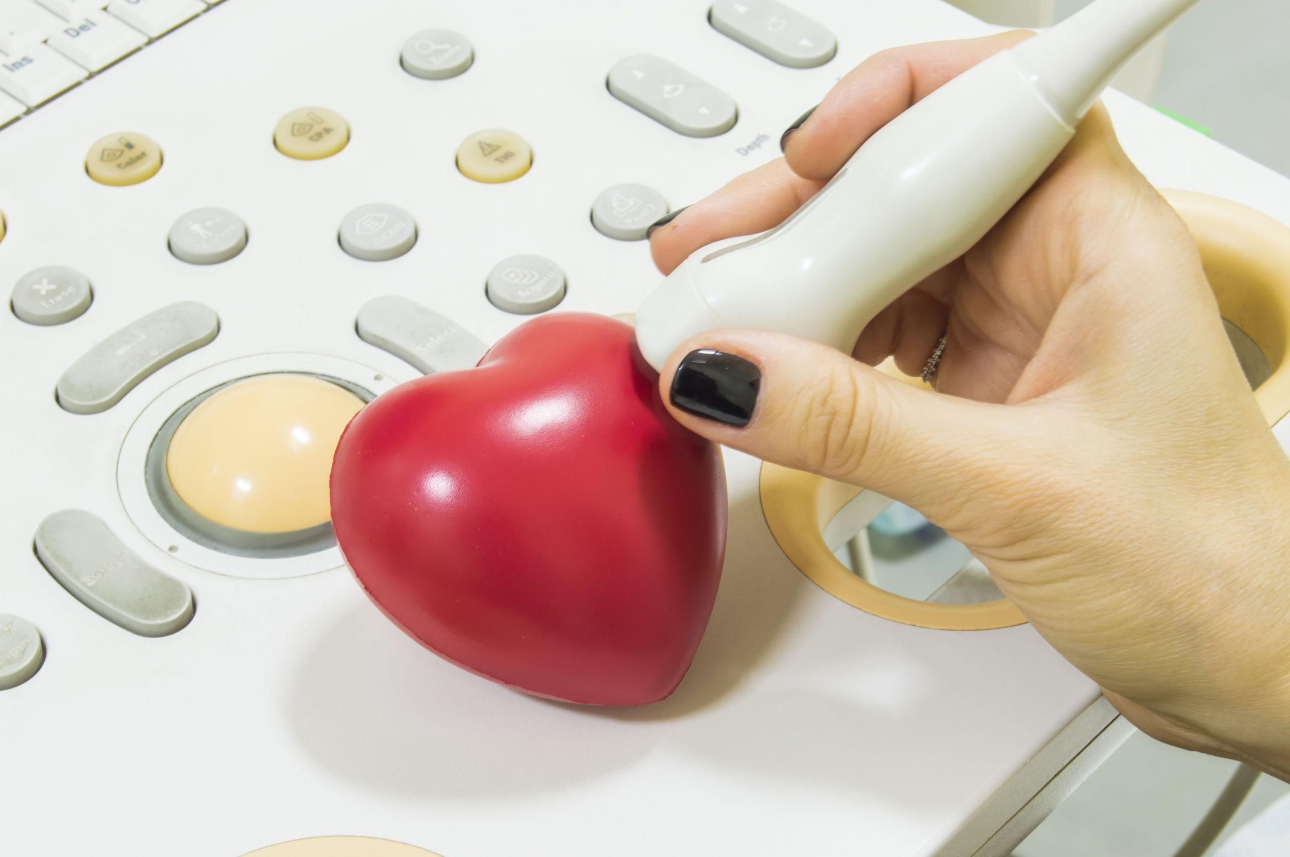 Lee más sobre el artículo La detección de efermedades cardíacas con la ecocardiografía fetal